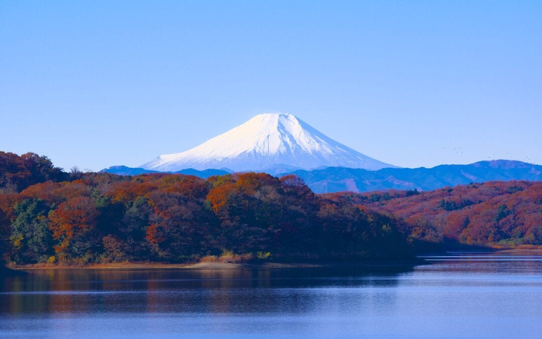 Living in Tokyo as a Digital Nomad